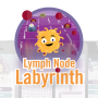 Lymph Node Labyrinth